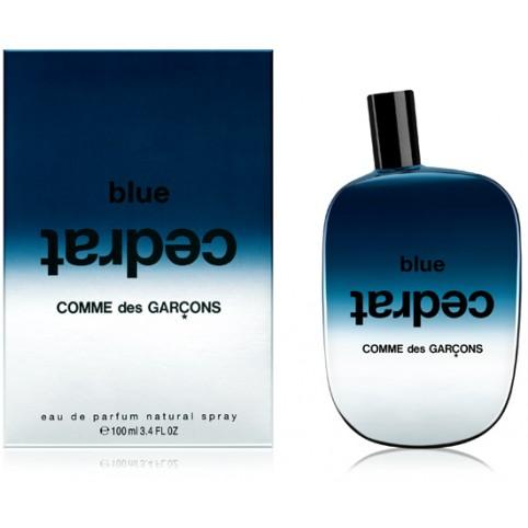 Comme des garçons bleu cendre edp 100ml - COMME DES GARÇONS. Perfumes Paris