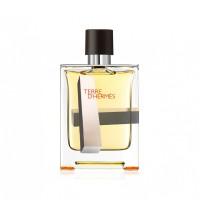 Terre d'Hermès EDT 100ml - Edición Limitada H.2 - HERMES. Comprar al Mejor Precio y leer opiniones